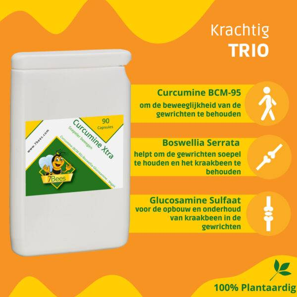 curcumine-boswellia-glucosamine-trio