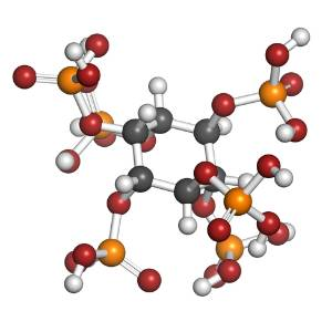 inosystol-b-complex