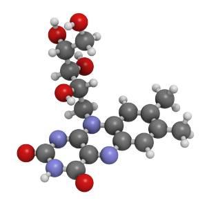 vitamine-b2-b-complex