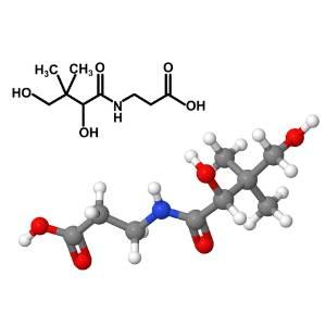 vitamine-b5-b-complex