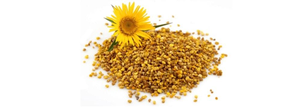 bijenpollen-superfood
