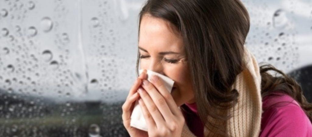 verkoudheid-weerstand-verhogen-echinacea-7bees